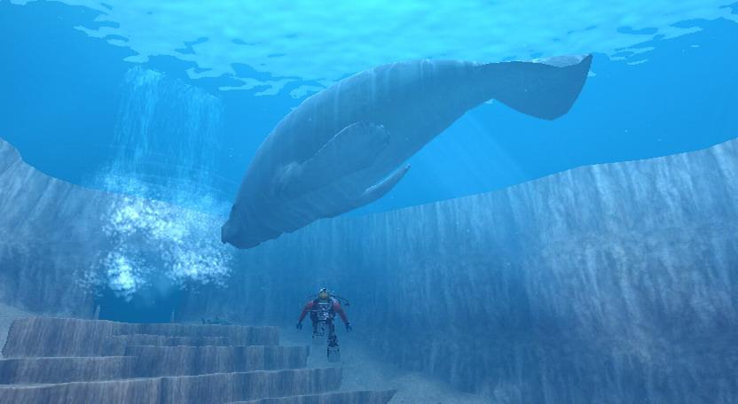 image.axd?picture=/2010/1/Endless Ocean/mini/Un éléphant de mer