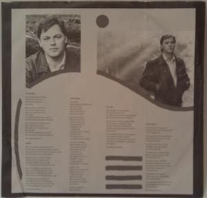 David Gilmour - About Face (4)
