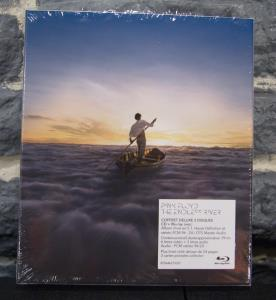 The Endless River (11)