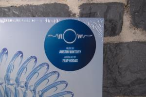 FlOw Vinyl Soundtrack (02)
