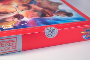 Street Fighter 30th Anniversary Collection - Edition Collector (04)