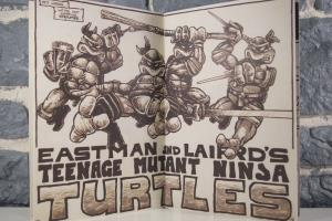 Teenage Mutant Ninja Turtles- The Ultimate Visual History (16)